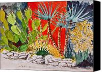 Austin Mixed Media Canvas Prints - Cactus Garden  Canvas Print by Fred Jinkins