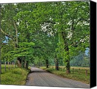 Scenic Roads Canvas Prints - Cades Cove - Scenic Sparks Lane Canvas Print by Thomas Schoeller