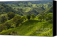 Rural Scenes Photo Canvas Prints - Caizan Hills Canvas Print by Heiko Koehrer-Wagner