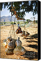Volcano Canvas Prints - Calabash gourd bottles in Mexico Canvas Print by Elena Elisseeva