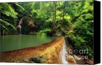 Azoren Canvas Prints - Caldeira Velha - Azores islands Canvas Print by Gaspar Avila