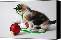 Household Canvas Prints - Calico kitten and Christmas ornaments Canvas Print by Garry Gay