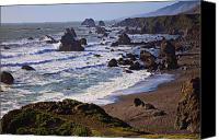 Wave Canvas Prints - California coast Sonoma Canvas Print by Garry Gay