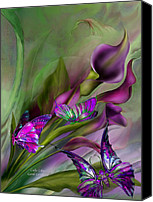 Canvas Mixed Media Canvas Prints - Calla Lilies Canvas Print by Carol Cavalaris