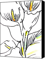 Calla Lily Drawings Canvas Prints - Calla-Lily-Abstract-Paintings-2 Canvas Print by Gordon Punt