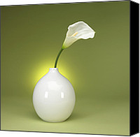 Green Canvas Prints - Calla Lily and Vase Canvas Print by Tony Ramos