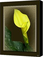 Calla Lily Mixed Media Canvas Prints - Calla Lily Canvas Print by Debra     Vatalaro
