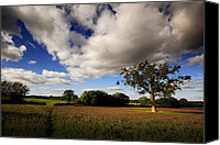 Tree Canvas Prints - Calmest place on earth Canvas Print by John Chivers