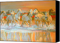 White Horses Canvas Prints - Camargue  Canvas Print by William Ireland
