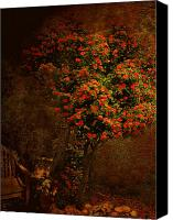 Camelia Canvas Prints - Camelia - How We Forget You Canvas Print by Jeff Burgess