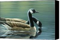 Geese Canvas Prints - Canada Geese Canvas Print by Mark Mittlesteadt