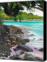 Diane Hewitt Canvas Prints - Caneel Bay I Canvas Print by Diane Hewitt
