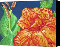 Canna Canvas Prints - Canna Flower Canvas Print by Adam Johnson