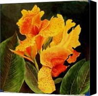 Canna Canvas Prints - Canna Lilies Canvas Print by Vickie Voelz