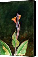 Canna Canvas Prints - Canna Lily Canvas Print by Irina Sztukowski
