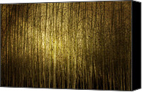 Forest Canvas Prints - Cant See The Forest For The Trees Canvas Print by Rebecca Cozart