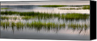 Cape Cod Scenery Canvas Prints - Cape Cod Marsh Canvas Print by Bill  Wakeley
