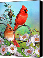 Fisher Canvas Prints - Cardinal Day 3 Canvas Print by JQ Licensing