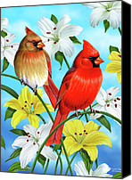 Fisher Canvas Prints - Cardinal Day Canvas Print by JQ Licensing
