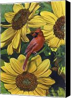 Floral Canvas Prints - Cardinal Feast Canvas Print by Peter Muzyka