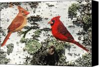 Birch Mixed Media Canvas Prints - Cardinal Pair II Canvas Print by Philip Hall