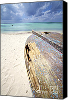 Ship Wreck Canvas Prints - Caribbean Shipwreck Canvas Print by David Letts