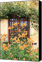 Stucco Canvas Prints - Carmel Mission Window Canvas Print by Carol Groenen