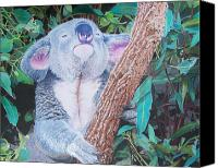 Koala Mixed Media Canvas Prints - Carmens Koala  Canvas Print by Constance Drescher