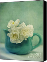Turquois Canvas Prints - Carnations In A Jar Canvas Print by Priska Wettstein