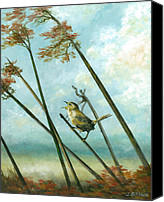 John Brown Canvas Prints - Carolina Wren Canvas Print by John Brown
