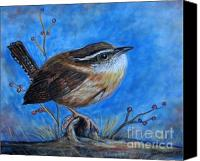 Carolina Wren Canvas Prints - Carolina Wren Canvas Print by Patricia L Davidson