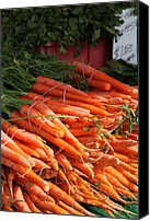 Stilllife Canvas Prints - Carrot Bounty Canvas Print by Enzie Shahmiri