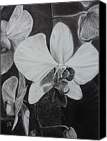 Estephy Sabin Figueroa Drawings Canvas Prints - Cascade of Orchidds Canvas Print by Estephy Sabin Figueroa