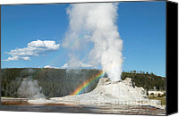Yellowstone Park Canvas Prints - Castle Geyser II Canvas Print by Clarence Holmes
