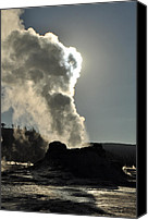 Yellowstone Park Canvas Prints - Castle Geyser Morning Canvas Print by Bruce Gourley