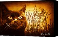 Mysterious Canvas Prints - Cat Dreams Canvas Print by Bob Orsillo