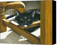 Tuxedo Cat Canvas Prints - Cat Under A Chair Canvas Print by Carol Wilson
