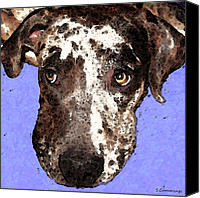 Soulful Canvas Prints - Catahoula Leopard Dog - Soulful Eyes Canvas Print by Sharon Cummings