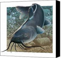 Catfish Canvas Prints - Catfish Canvas Print by Valerian Ruppert