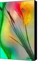 Abstract Flower Canvas Prints - Cattails Canvas Print by Jean Gugliuzza