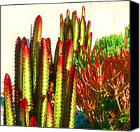 Flora Canvas Prints - Catus Garden Canvas Print by Amy Vangsgard