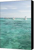 Grand Cayman Canvas Prints - Cayman Islands Sting Ray City Snorklers Canvas Print by James Forte