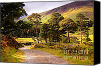 Top Canvas Prints - Celtic Spirit in Color. Wicklow  Mountains. Ireland Canvas Print by Jenny Rainbow
