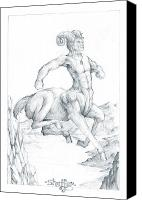 Centaur Drawings Canvas Prints - Centaur 1 Canvas Print by Curtiss Shaffer