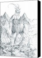 Centaur Drawings Canvas Prints - Centaur 2 Canvas Print by Curtiss Shaffer