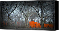Nyc Photo Canvas Prints - Central Park Canvas Print by Irina  March