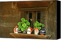 Wooden Bowls Canvas Prints - Ceramic jugs and geraniums at the window Canvas Print by Emanuel Tanjala
