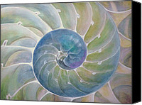Shore Mixed Media Canvas Prints - Chambered Nautilus Canvas Print by Ev Cabrera Marinucci
