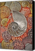 Spiral Canvas Prints - Chambered Nautilus Shell Abstract Canvas Print by Garry Gay