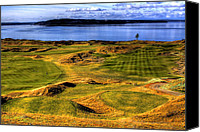 Golfing Canvas Prints - Chambers Bay Lone Tree Canvas Print by David Patterson